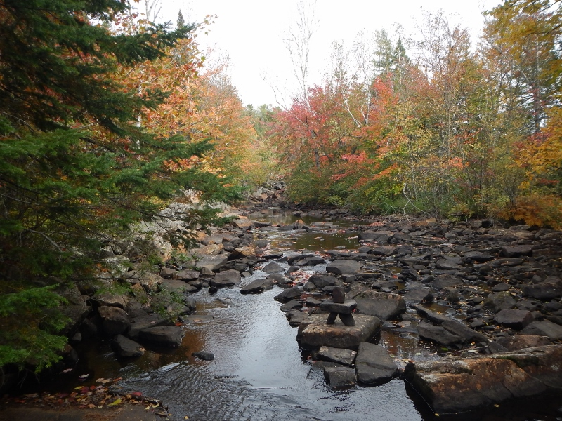 2015 Fall Colour         and a stream in Algonquin Park